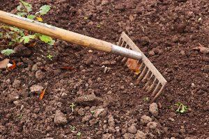 Entretien du sol de jardin : Nourrissez-le d'un régime organique