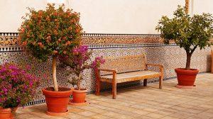 Read more about the article Comment entretenir les sols en terre cuite?