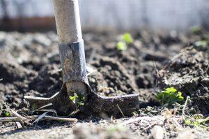 Le travail du sol du jardin : Nos conseils